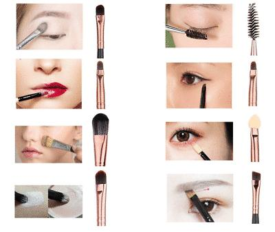 Set Powder Foundation Eyeshadow Eyeliner Brush